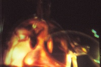 Author: Marcel·lí Antúnez Roca. Photo: Nuria Andreu. <a href='http://marceliantunez.com/media/img/work/14Epizoo1994_interactive_performance_cara_scene.jpg' target='_blank'>Download original</a> <span style='color:transparent'>486</span>