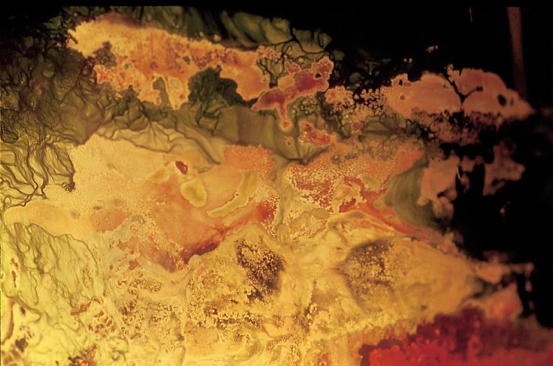 AGAR, 1999. Bioinstallation. Winogradsky Bacteria. Author: Marcel·lí Antúnez Roca. Photo: Carles Rodriguez.