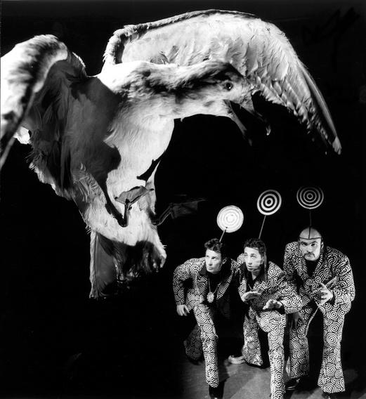 14 Los Rinos. Rinolacxia, 1991. Rinos & bird. Author: Los Rinos.